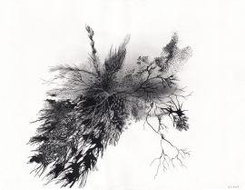 Galerie Papillon - Gaëlle Chotard, Etats d'âmes, 2007, encre de chine, crayon, encre argenté, 31 x 24 cm, Courtesy GaleriePapillon