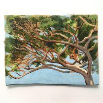 Cossé Matthieu, Etude de pin 3, gouache sur carton, 24 cm x 32 cm, 2016