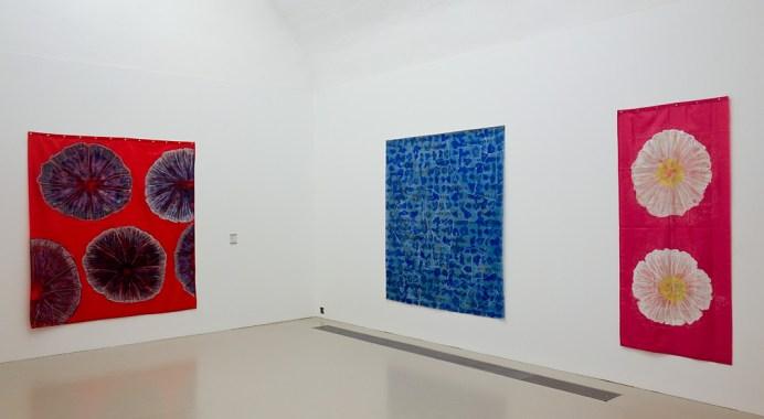 Jean-Michel Meurice - Parcours 1956-2018 au Musée Fabre - Années 2000 - Corolles volubiles
