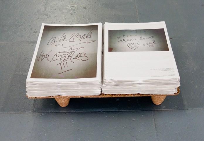 Paul Heintz, LA VIE2 REVE NICK CHARLESIII, 2014 - CACN Nîmes