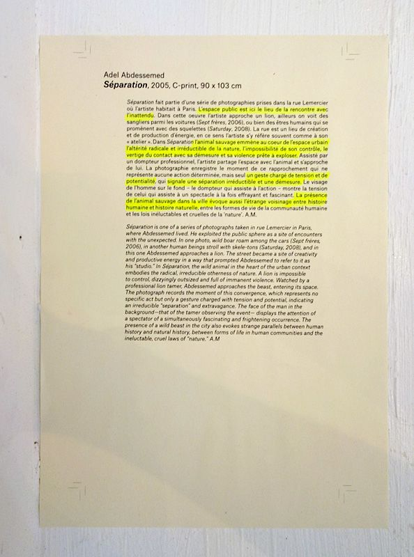 Adel Abdessemed - Au-delà du principe de plaisir - Rencontres Arles 2018 - Un exemple de cartel enrichi