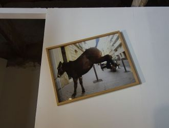 Adel Abdessemed, Jump and Jolt, 2007 - Au-delà du principe de plaisir - Rencontres Arles 2018