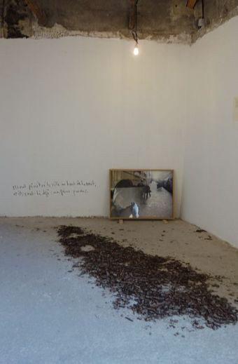 Adel Abdessemed, Sept frères, 2006 - Au-delà du principe de plaisir - Rencontres Arles 2018