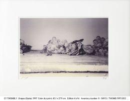 Cy Twombly, 1997.0012 Grapes (Gaeta) (II - 049 D)