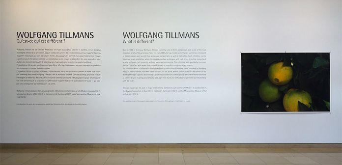 Wolfgang Tillmans, Qu'est-ce qui est différent à Carré d'Art – Nîmes - Vue de l'exposition - Hall