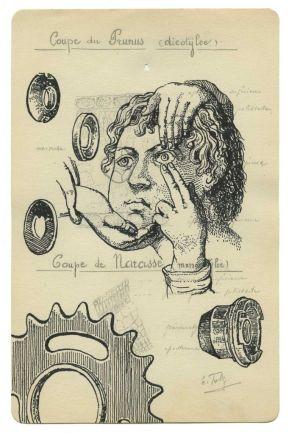 Benjamin Monti, Sans titre (coupe du prunus dycotilée), encre de chine sur dessin trouvé (de la série des histoires
