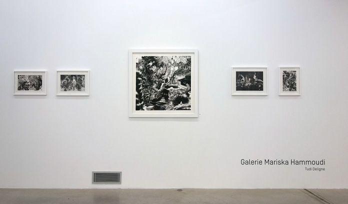 Drawing room 018 à La Panacée - Montpellier - Galerie Mariska Hammoudi - Tudi Deligne