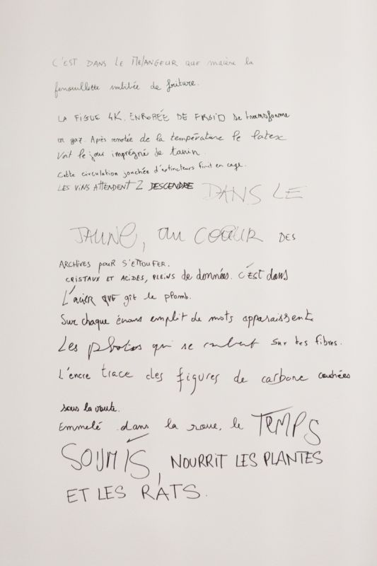 Téquaté LO Niktété - Le Wonder-Liebert à Montpellier - Mécènes du Sud - Photo © Elise Ortiou-Campion