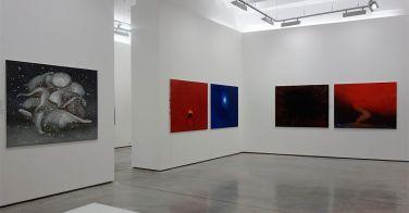 Nedko Solakov - Paintings with No Texts and Stories on Walls à La Pancée - vue de l'exposition 06