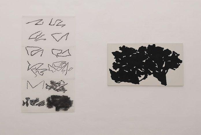 Alexandre Hollan -L'invisible est le visible au Musée Fabre - Salle 1 - En quête du sujet