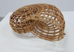 Teruhisa Suzuki - Shelter, 2005 - Biomorphisme à La Friche de la Belle de Mai