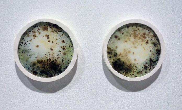 Ilyes Mazari - Browning – Veilleur, 2017, cyanotype, acide tannique, acide chlorhydrique, acide sulfurique, borax, verre, plâtre, 2 éléments, ø 9,5 cm chacun. Sud magnétique - Vidéochroniques