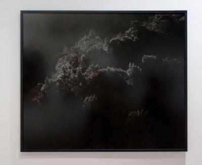 Awoiska van der Molen - #346-18, 2013 - Sur Terre - Image, technologies & monde naturel - Rencontres Arles 2019