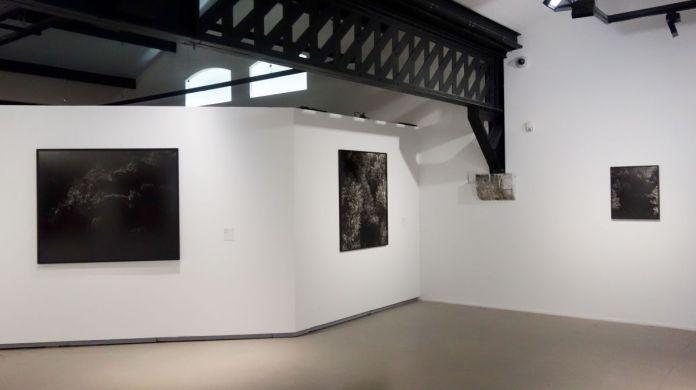 Awoiska van der Molen - Sur Terre - Image, technologies & monde naturel - Rencontres Arles 2019