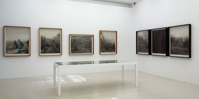 Clément Verger - Endeavour, 2016-2019 - Viva Villa 2019 - Collection Lambert