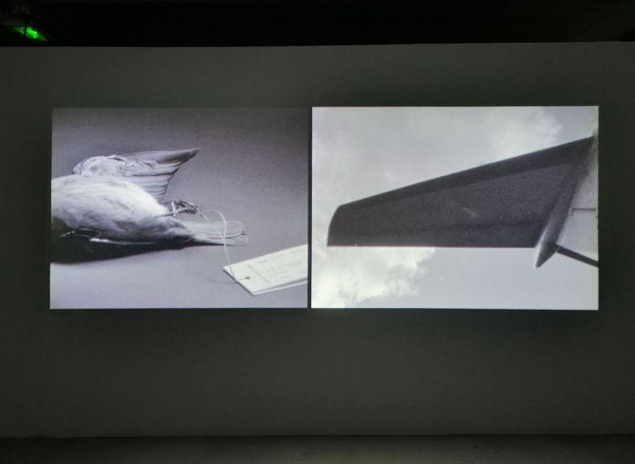 Saara Ekström - Body All Eyes, 2018 - Les Instants Vidéo à la Friche