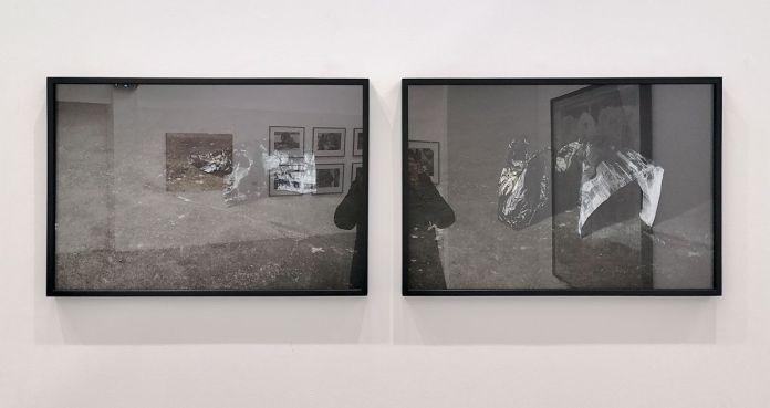 Paul Pouvreau - Mutation, 2017 et Le veau d'or, 2017 - Photographie et documents, 1983-2018 au Frac Pac