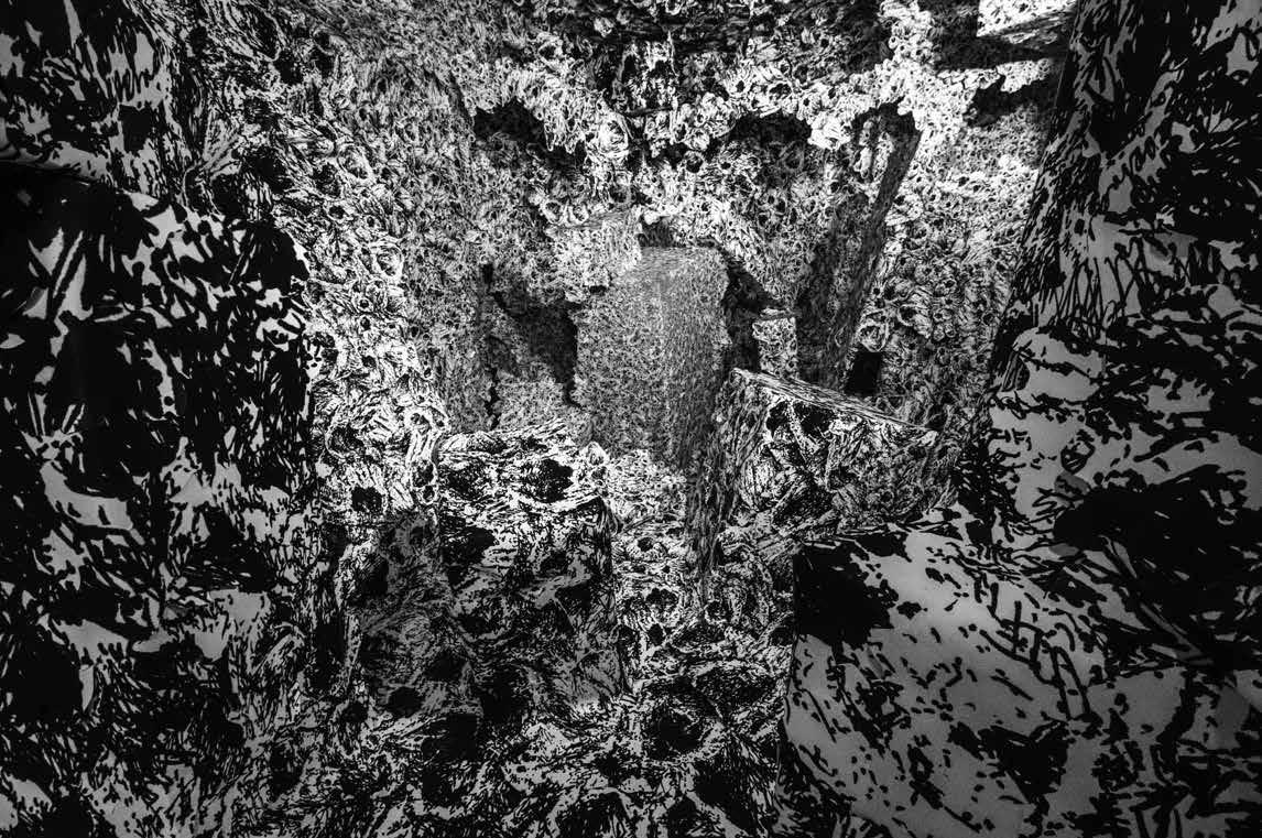Anaïs Lelièvre, Coquilles 1, 2019. Installation immersive d'impressions numériques sur papier du dessin Concrétion de coquilles sur amphore archéologique