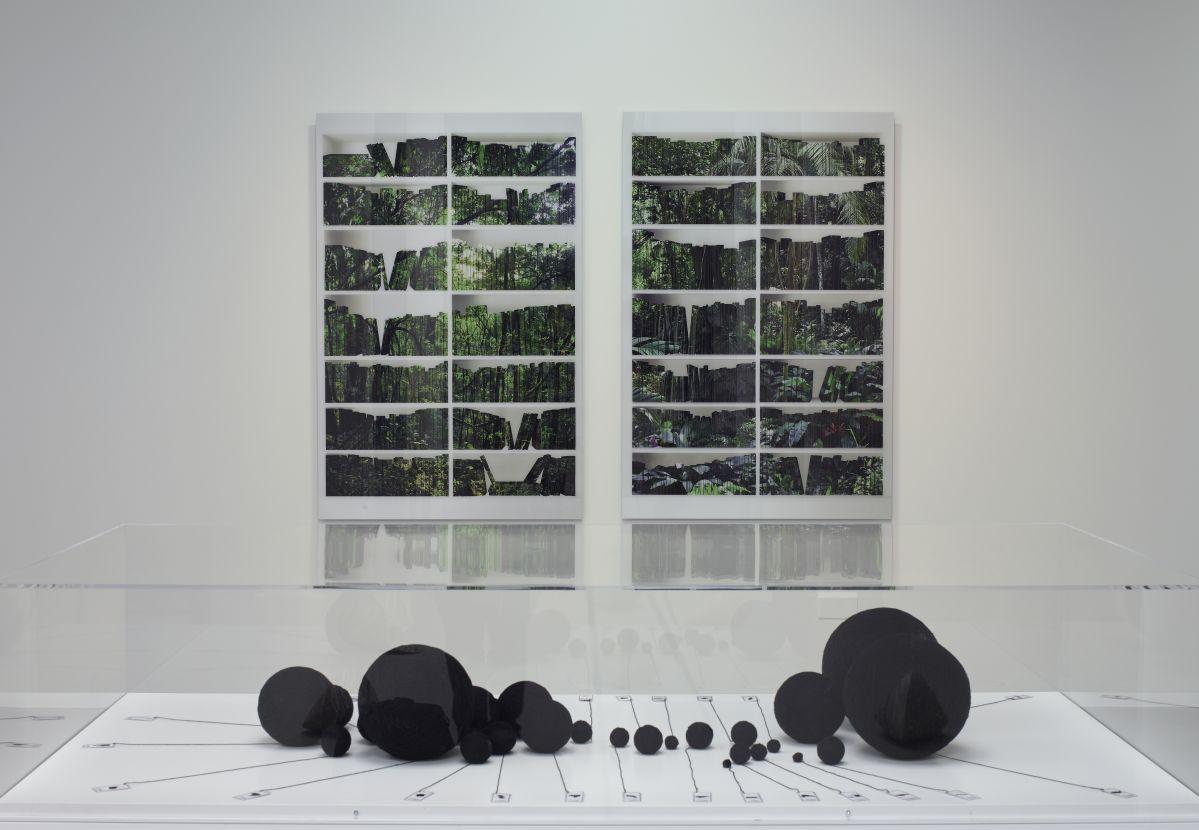 Mecarõ - L'Amazonie dans la collection Petitgas - MO.CO. Hôtel des collections, 2020, Photo Marc Domage