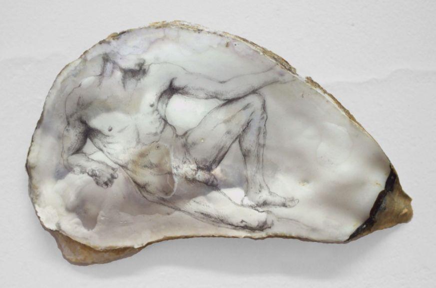 Julie Dalmon, Les oubliés - dessin dans des coquilles d'huitres