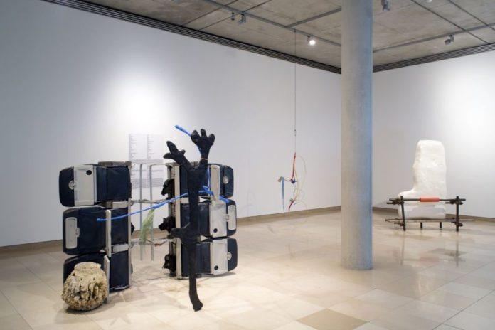 Accrochage 2020 de la collection à Carré d'Art - Salle 6- Julien Creuzet et Jumana Manna - Photo (c) C. Eymenier