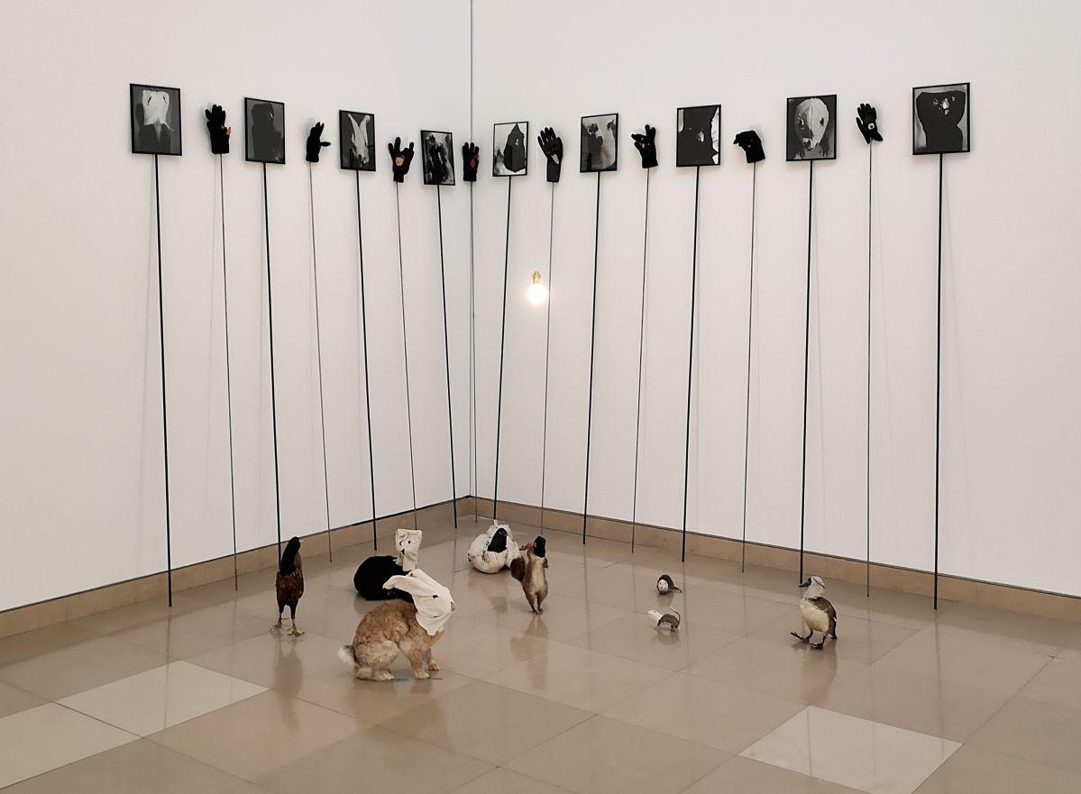 Annette Messager - Sans titre, 1992 - Des Visages - Le temps de l'Autre - Carré d'Art à Nîmes - Salle 5