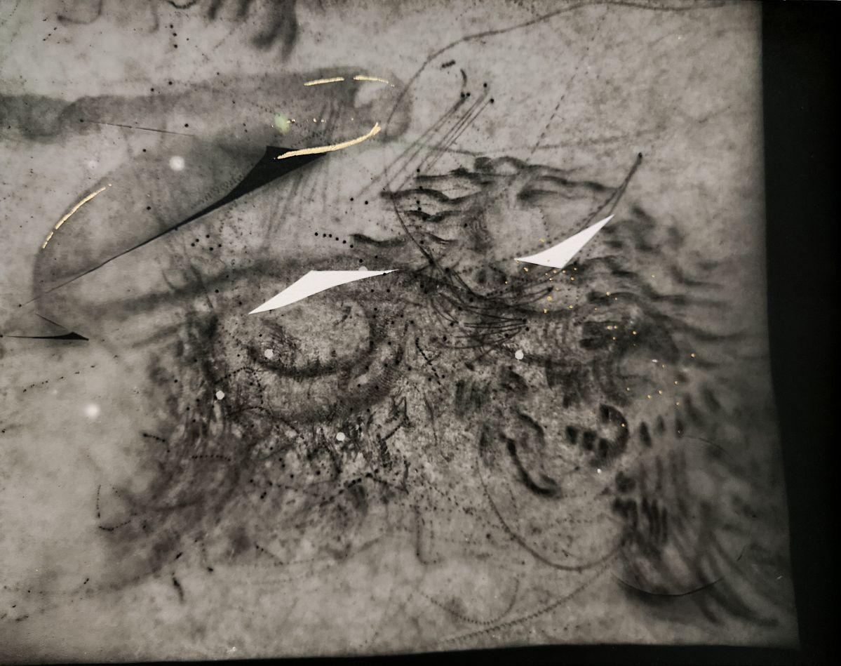 Nina Roussière - Photogrammes argentiques, rehauts dorés, 45 x 145 cm, 2020 (détail 2)