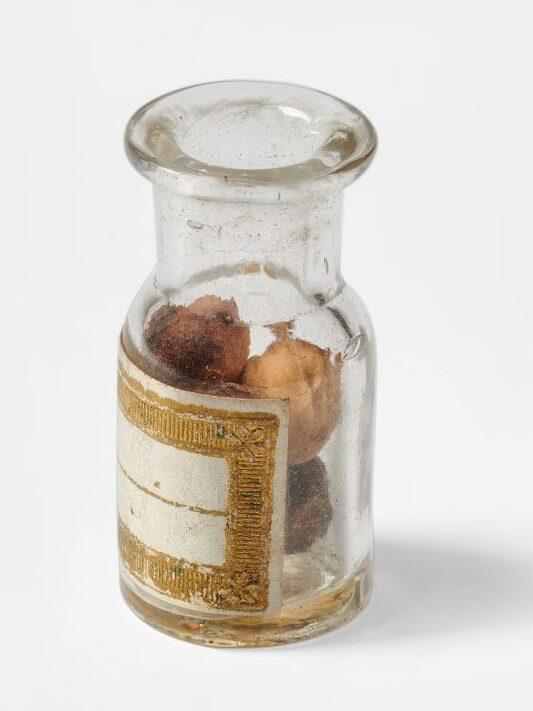 Amulette pour la divination amoureuse, flacon contenant des noyaux de cerise, Bretagne, 2e moitié du XIXe siècle © Mucem Yves Inchierman