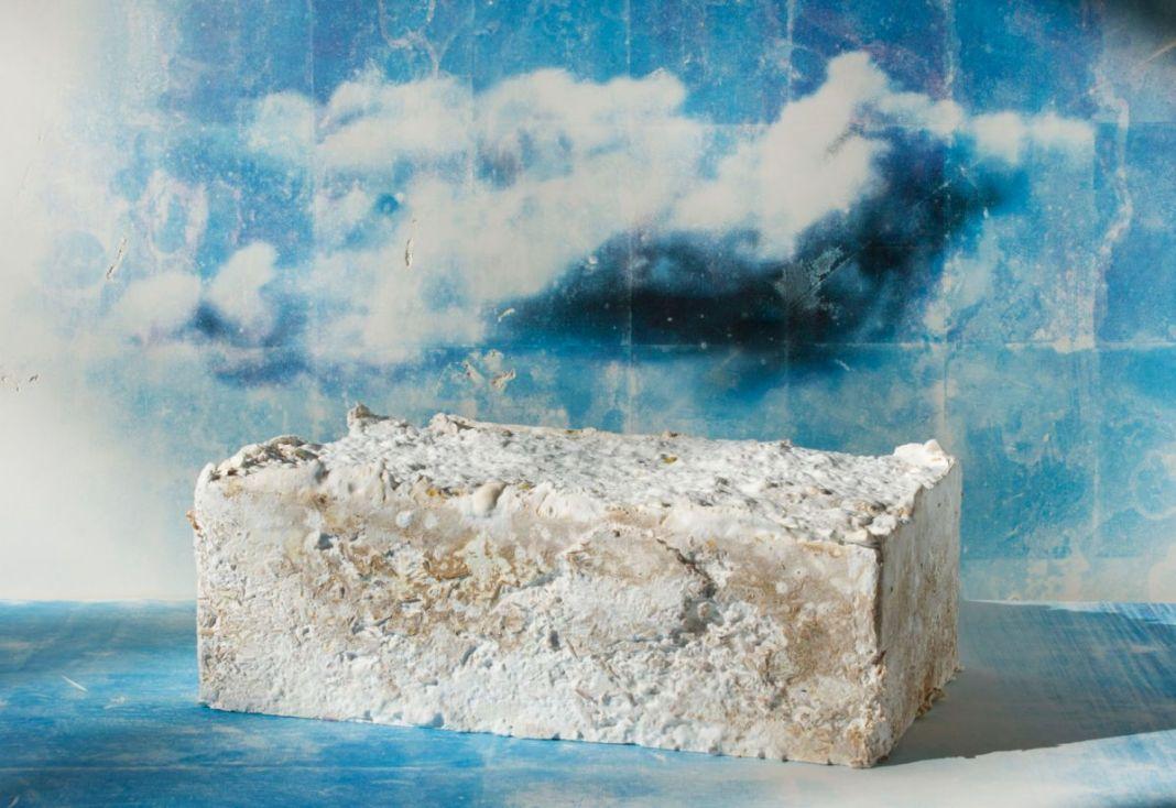 Côme Di Meglio - Brique de fondation de MycoTemple