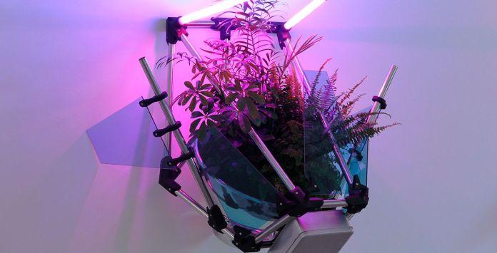 Donatien Aubert - Les jardins cybernétiques, 2020 - Éternité part 2 - Friche la Belle de Mai © Donatien Aubert