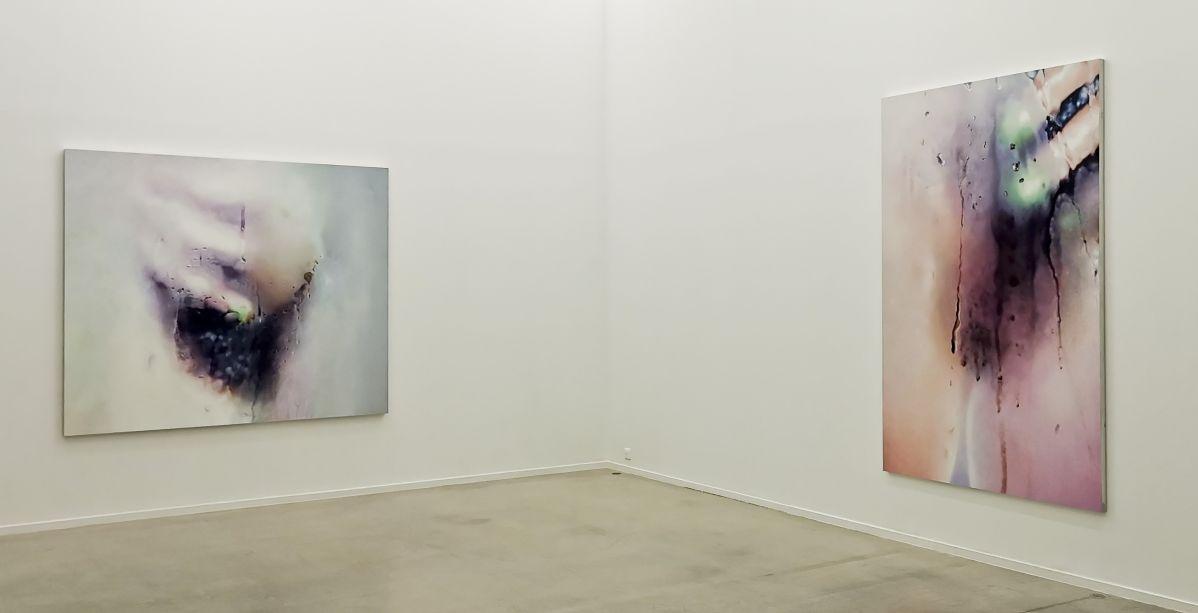 Marilyn Minter - Série Bush Paintings - All Wet au MOCO Panacée