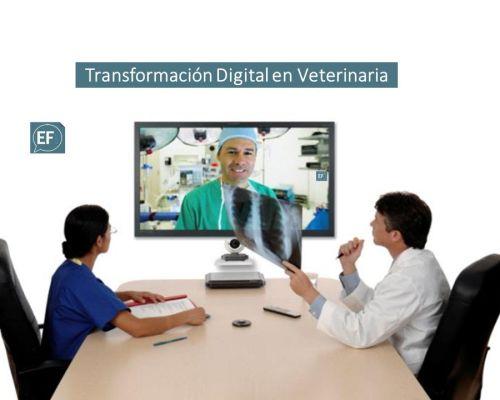 (Español) Auditoría Digital
