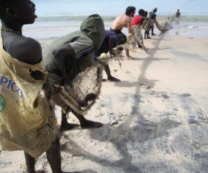 Partir au Sénégal en novembre