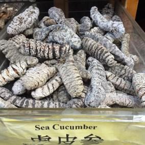 Hum le bon concombre de mer :-(