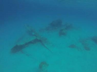 Carcasse d'avion au fond de l'eau : sanctuaire à poissons et à coraux