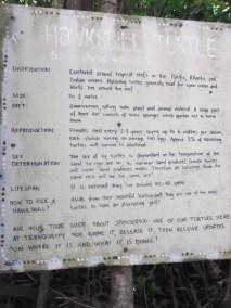 Panneau sanctuaire des tortues