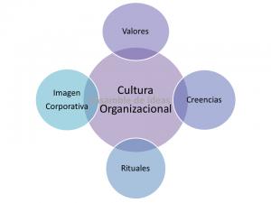Cultura organizacional de una empresa: valores, creencias, rituales e imagen corporativa