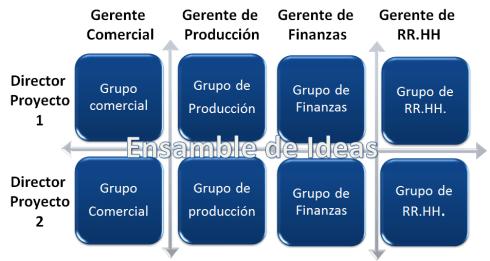 departamentalización matricial  tipos de departamentalización
