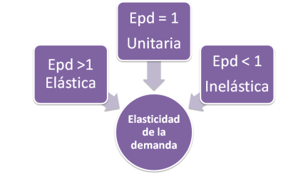 Elasticidad de la demanda - Elasticidad precio - demanda