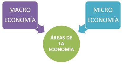 qué es la economia - áreas de estudio de la economía  microeconomía macro economía micro y macro economía