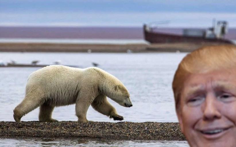 Qué busca Trump, tratando de adueñarse de GROENLANDIA...?
