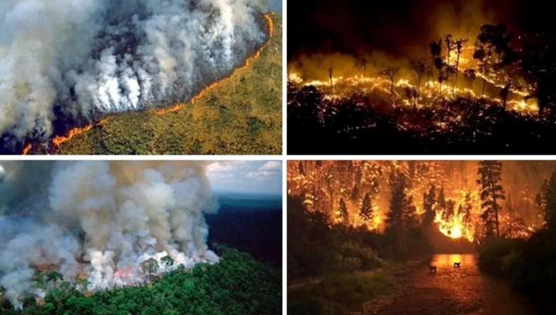 ¿Qué les parece? 40 millones de dólares para derrocar Maduro y sólo 22 millones para apagar el voraz incendio que amenaza con destruir la Selva del Amazonas...