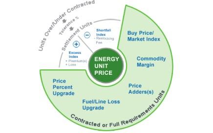 EnSite Safari Suite Complex Energy Pricing