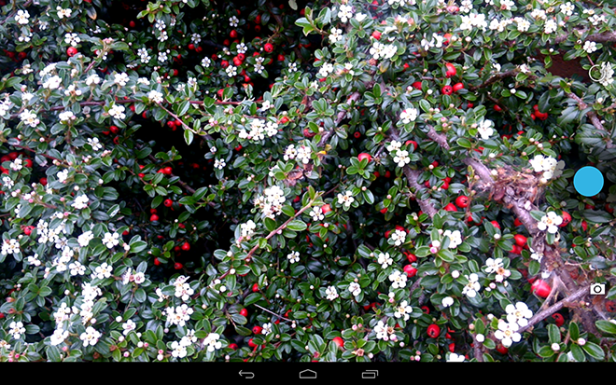 Gigaset QV1030 Camera App