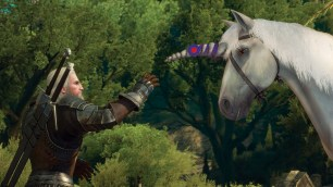 The_Witcher_3_Wild_Hunt_Blood_and_Wine_Thanks_for_reaching_out