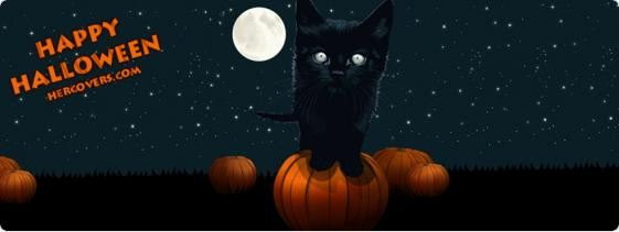 black kitty happy halloween facebook cover image
