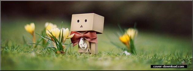 cool danbo fb cover photo