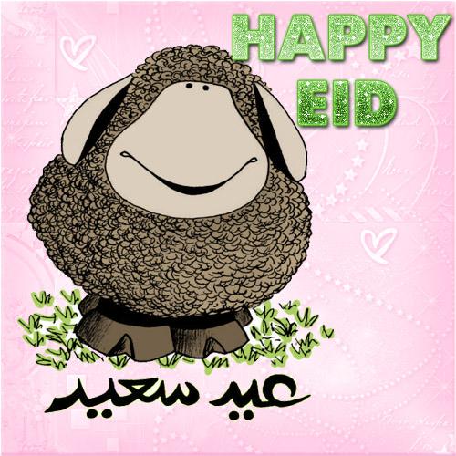 Eid Ul Adha Sheep Image