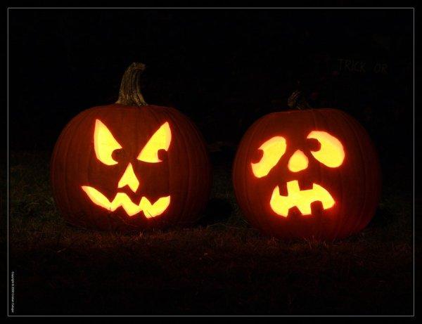 amazing pumpkin carving ideas for halloween