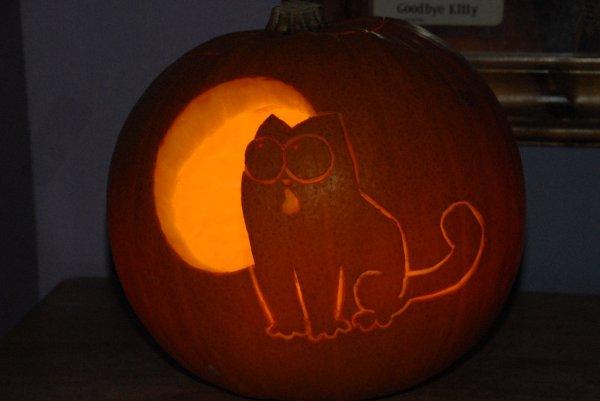 sweet simon's cat pumpkin for halloween